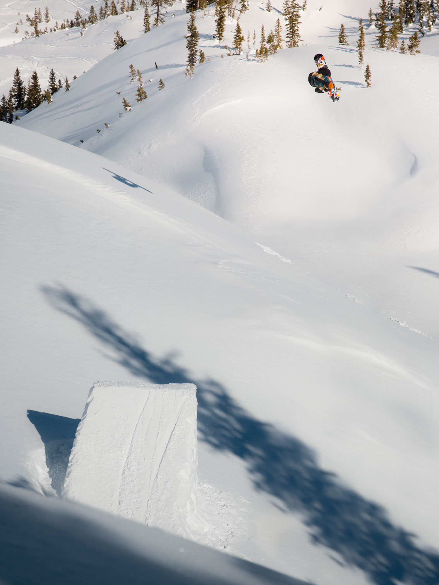 Travis Rice Snowboarding