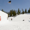 8-superpark16-scott-blum-bird